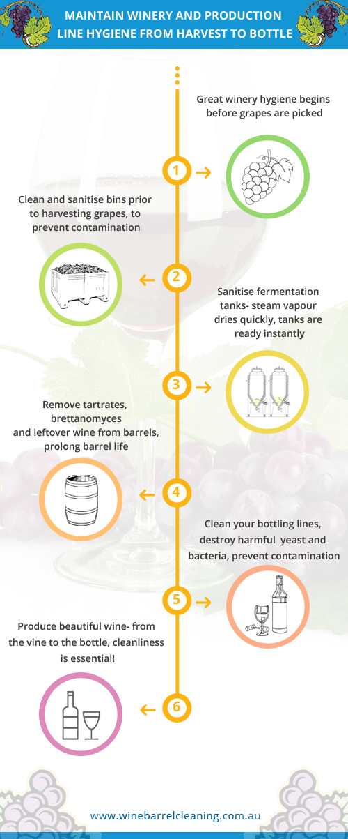 winery cleaning schematic overview, recommendations for sanitising wine production facilities